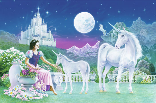 Photomural - Unicorn Princess